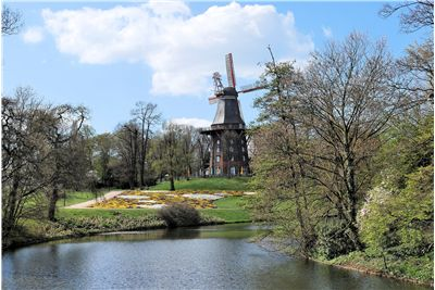 Picture Of Windmill Water Trees