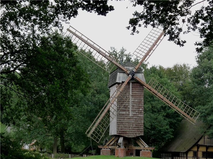 Picture Of Windmill Wing
