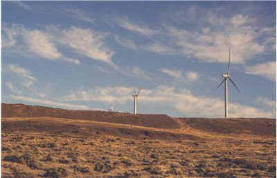 Picture Of Windmills Fields