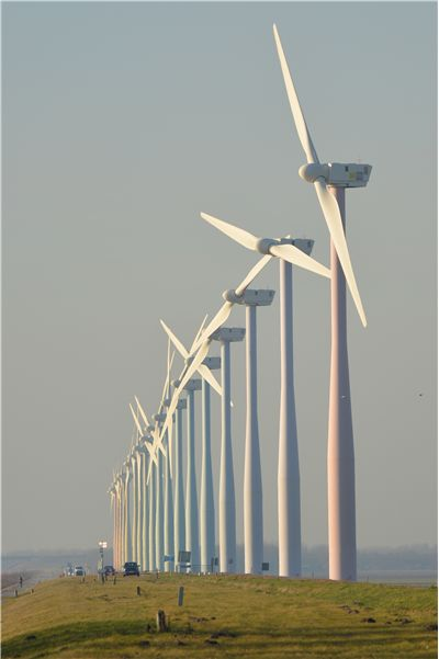 Picture Of Windmills In Netherlands